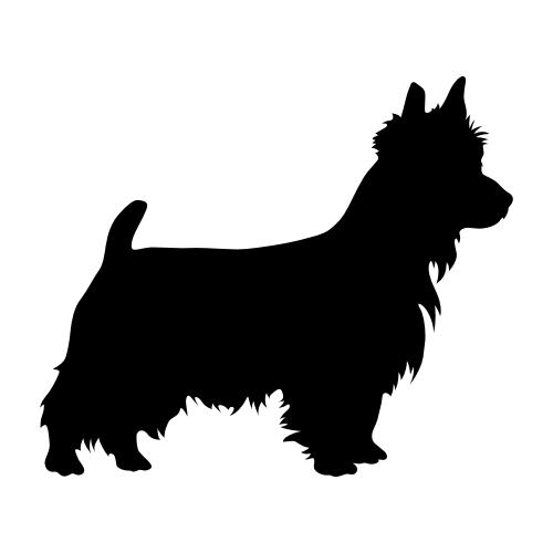 Australian Terrier Bügelbilder