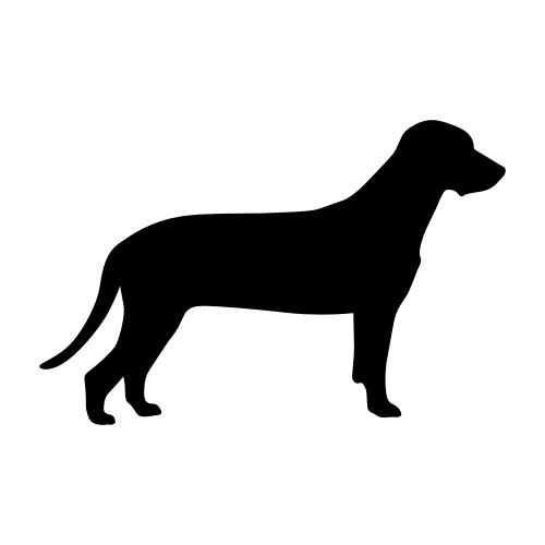 Bayerischer Gebirgsschweißhund Bügelbilder