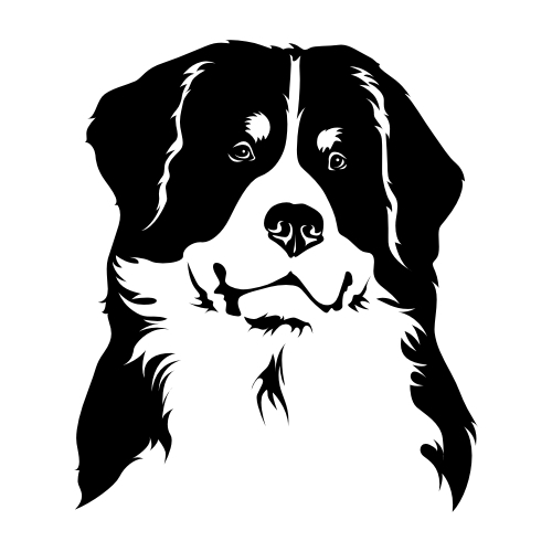 Berner Sennenhund Bügelbilder