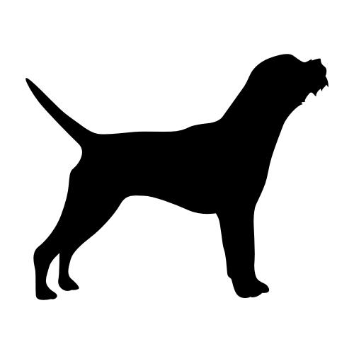 Border Terrier Bügelbilder