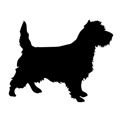 Cairn Terrier Bügelbilder