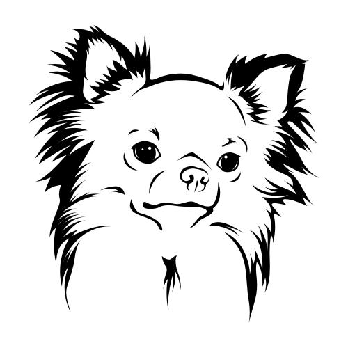 Chihuahua Bügelbilder