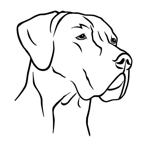 Deutsche Dogge Wandtattoos