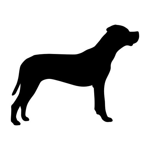 Dogo Argentino Wandtattoos