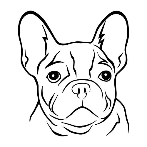 Französische Bulldogge Wandtattoos