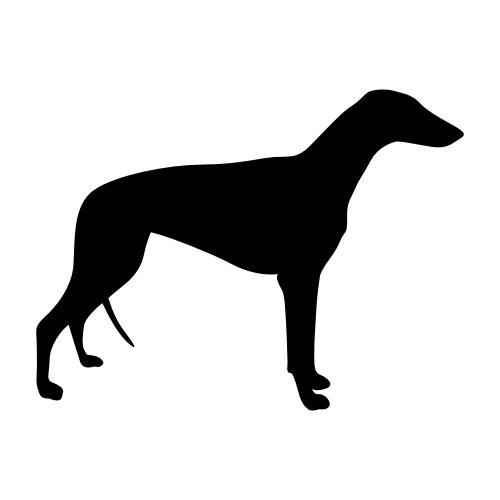 Greyhound Wandtattoos