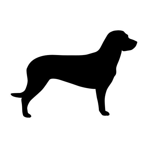 Hannoverscher Schweißhund Wandtattoos