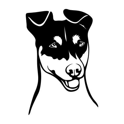 Jack Russell Terrier Aufkleber
