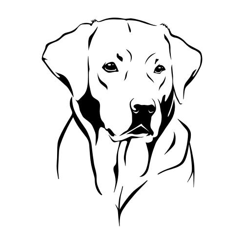 Labrador Retriever Aufkleber