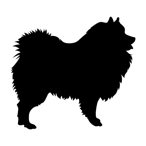 Wolfsspitz / Keeshond Aufkleber