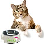 Katzennapf mit Namen